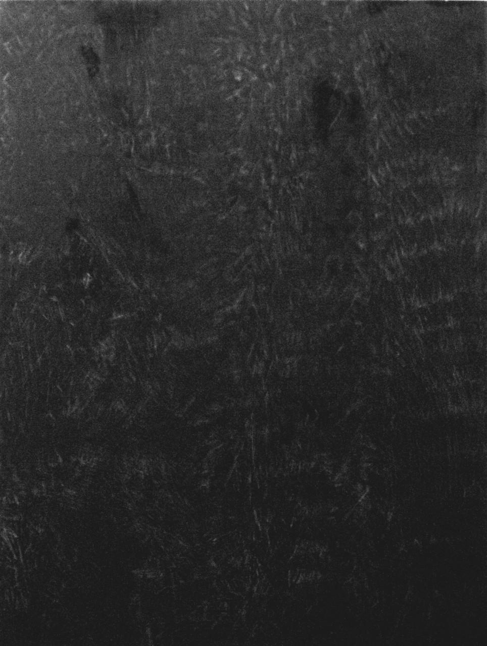 619, 2015 olio su tavola 89x67 cm