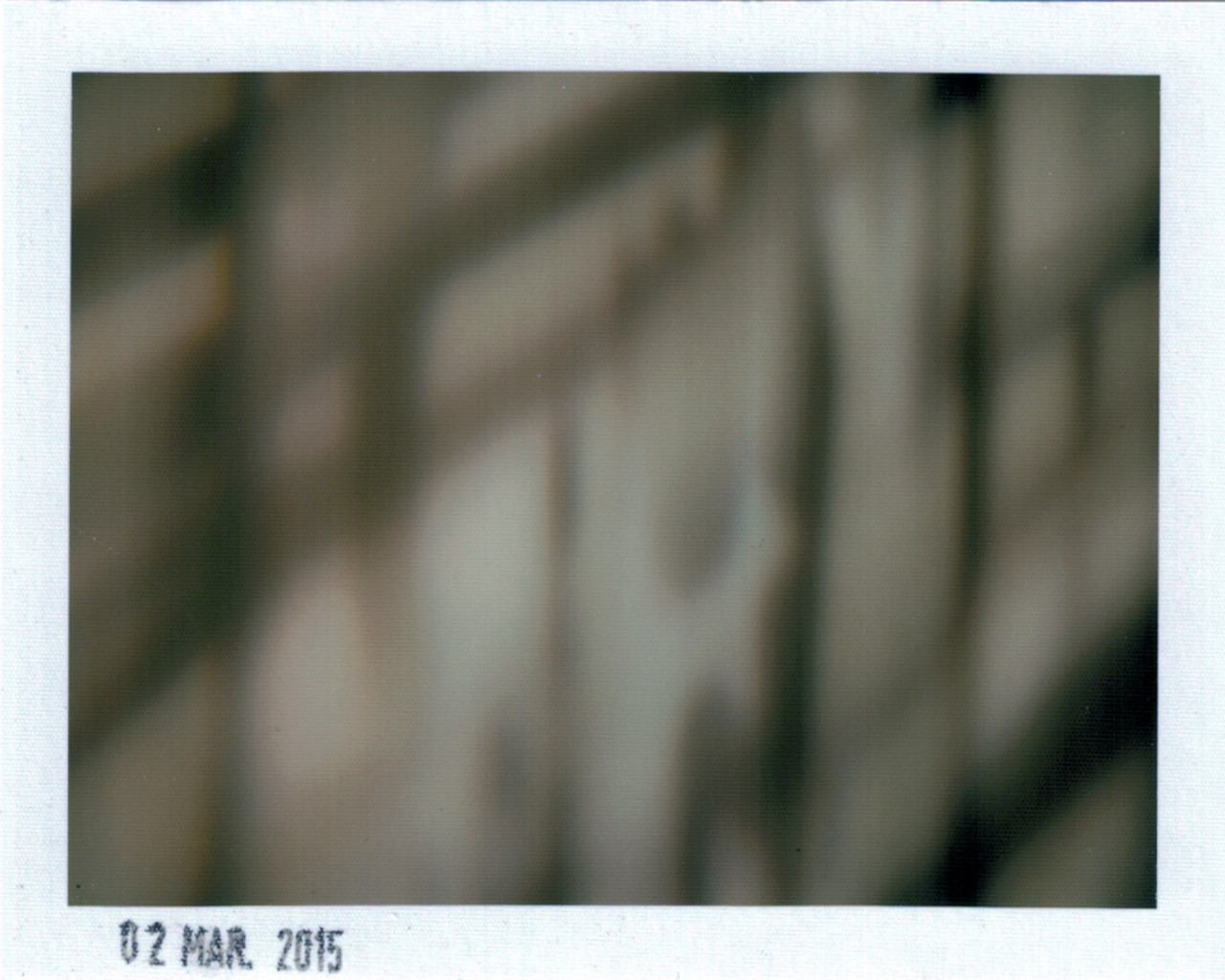 Polaroid 2
